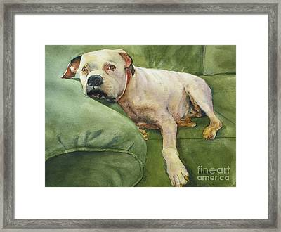 My Comfort Zone Framed Print by Karol Wyckoff