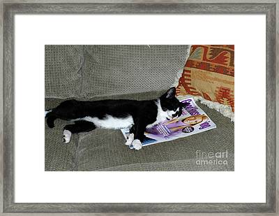 My Dream Girl Framed Print by Paul W Faust -  Impressions of Light