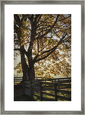 My Favorite Season - Autumn Art Framed Print by Jordan Blackstone