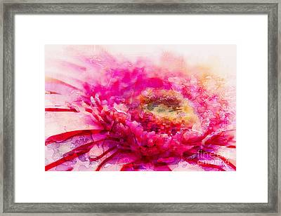 My Favourite Abstract Framed Print by Clare Bevan