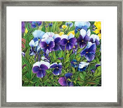 My Field Of Flowers Framed Print by Jeanette Schumacher