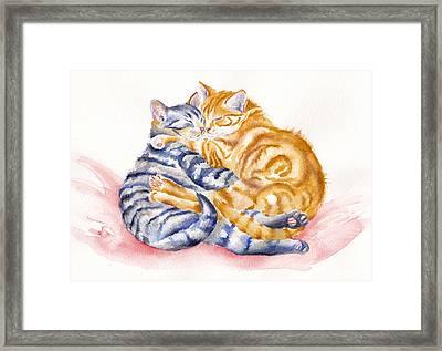 My Furry Valentine Framed Print by Debra Hall