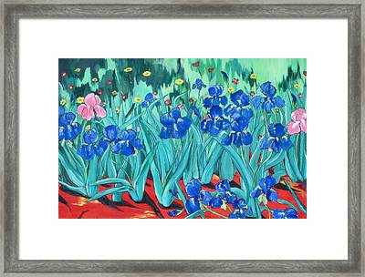 My Irises Framed Print by Barbara Remensnyder