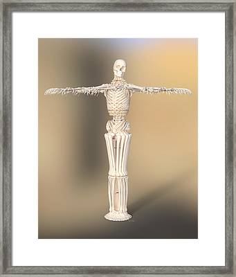 My Job Is To Hang On Framed Print by Betsy Knapp