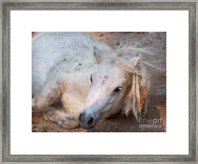 My Little Horse Framed Print by Angela Doelling AD DESIGN Photo and PhotoArt