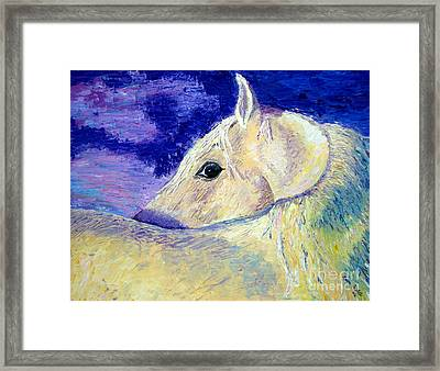 My Promus Framed Print by Lisa Rose Musselwhite