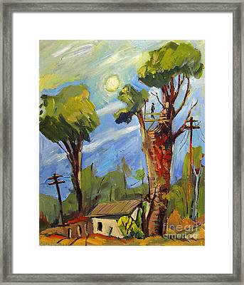 My Treehouse Behind The Garage On Madison Framed Print by Charlie Spear