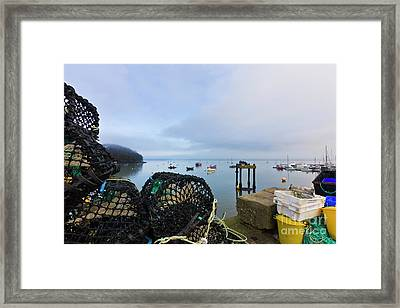 Mylor, A Working Harbour Framed Print by Terri Waters