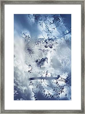 Mysterious Carnival Mask Framed Print by Jorgo Photography - Wall Art Gallery
