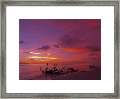 Mysterious Sunset Framed Print by Melanie Viola