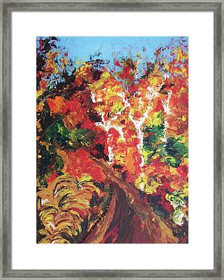 Mysterious Woods Framed Print by Suzanne  Marie Leclair