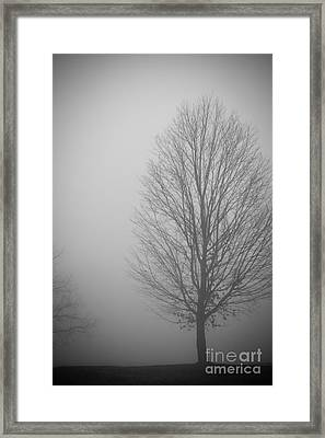 Mystery Morning - Monochrome Framed Print by Claudia M Photography