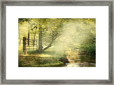 Mystical Creek Framed Print by Michael Forte