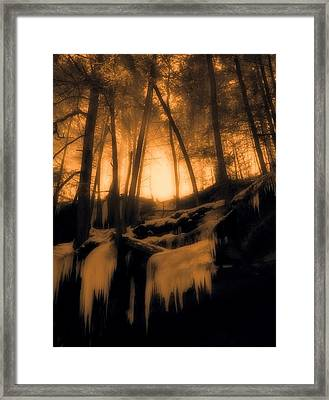 Mystical Morning Light In The Forest Framed Print by Dan Sproul