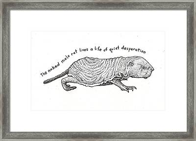 Naked Mole Rat Framed Print by Christy Beckwith