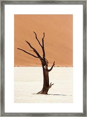 Namib Desert Framed Print by Stephen Smith