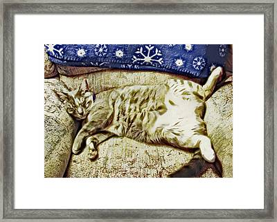 Nap Position Number 16 Framed Print by David G Paul