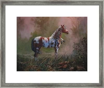 Native American War Pony Framed Print by Tom Shropshire