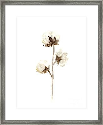 Natural Cotton Wall Hanging Framed Print by Joanna Szmerdt