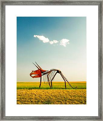 Natural Selection Framed Print by Todd Klassy