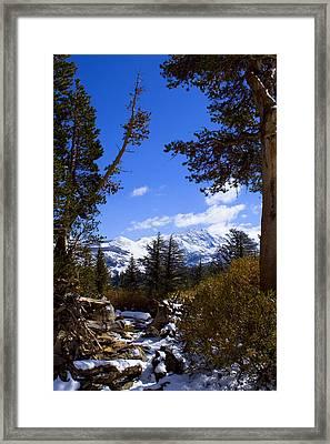 Naturally Framed Framed Print by Chris Brannen