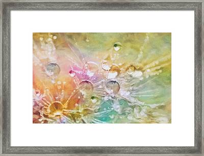 Nature As A Tender Abstraction Framed Print by Georgiana Romanovna