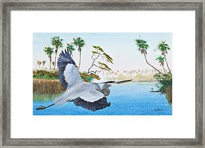Nature Coast 2 Framed Print by Kevin Brant