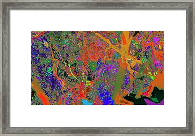 Nature Colorfication Glow 13 Framed Print by Kenneth James