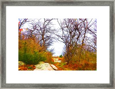 Nature Colors Framed Print by Lilia D