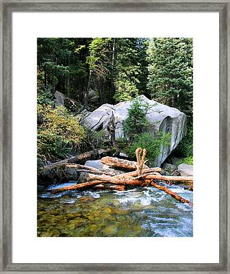 Nature's Filters Framed Print by Kristin Elmquist