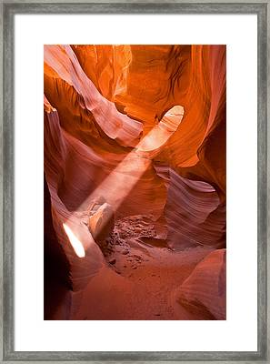 Nature's Spotlight Framed Print by Guy Schmickle