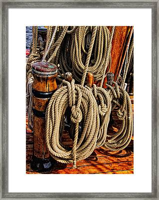 Nautical Knots 17 Oil Framed Print by Mark Myhaver