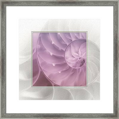 Nautilus Matted Framed Print by Tom Mc Nemar