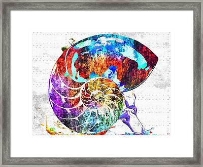 Nautilus Shell Grunge Framed Print by Daniel Janda