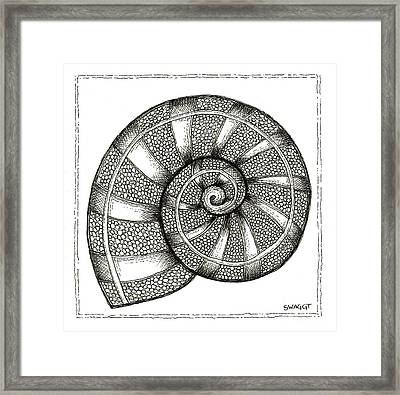 Nautilus Framed Print by Stephanie Troxell