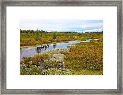 Navigating Brown's Tract Inlet Framed Print by David Patterson