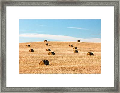 Nearly Covered Framed Print by Todd Klassy