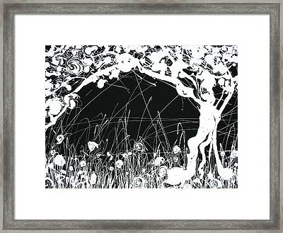 Negative Landscape Framed Print by Ric Bascobert