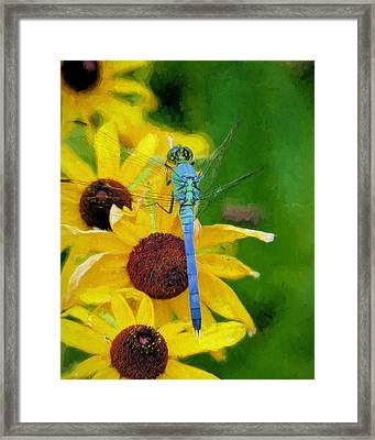 Neon Pastels Framed Print by JC Findley