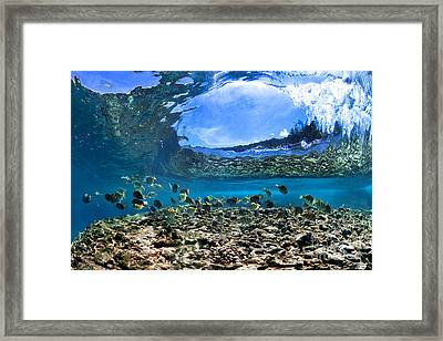 Neptunes Eye Framed Print by Sean Davey
