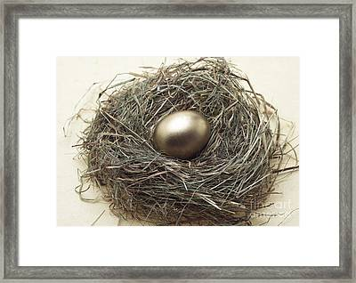 Nest With Golden Egg Framed Print by Gerard Lacz