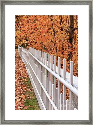 New England White Picket Fence With Fall Foliage Framed Print by Edward Fielding