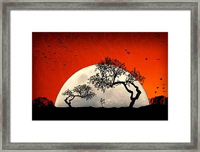 New Growth New Hope Framed Print by Holly Kempe