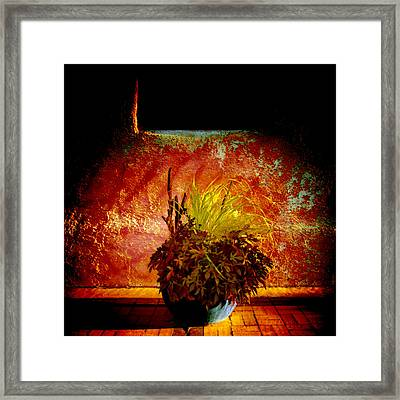 New Mexico Night Framed Print by Ann Powell