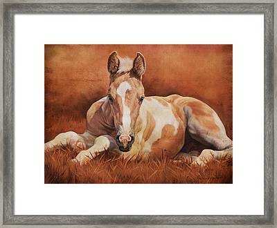 New Paint Framed Print by JQ Licensing