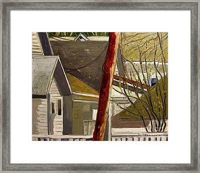 New Red Pine Rising Up Framed Print by Charlie Spear
