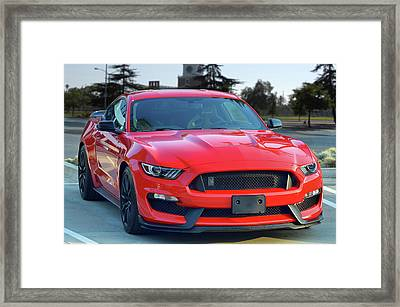 New Shelby Delivered Framed Print by Bill Dutting