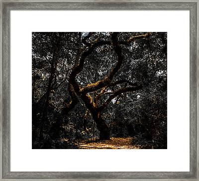 The Tree Framed Print by Roberto Arroyo