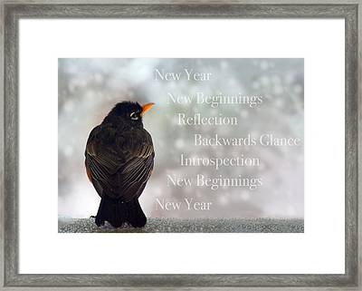 New Years Card Framed Print by Lisa Knechtel