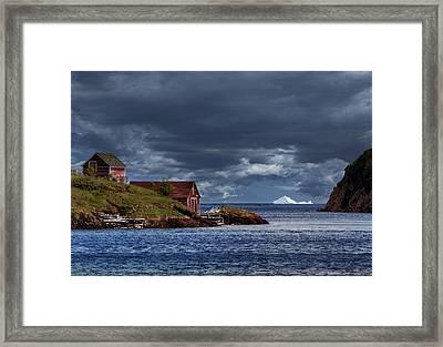 Newfoundland In June Framed Print by Janet Ballard